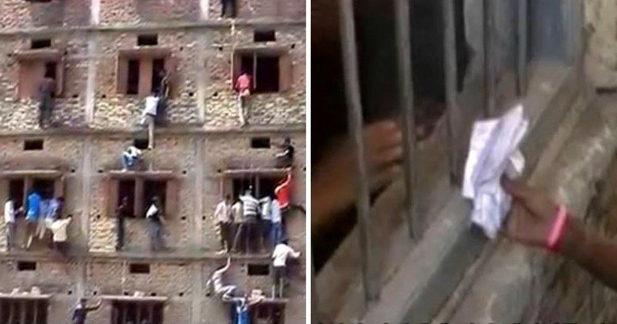 cats 8.jpg?resize=300,169 - 인도에서 위험천만한 건물 외벽을 오르는 사람들의 정체