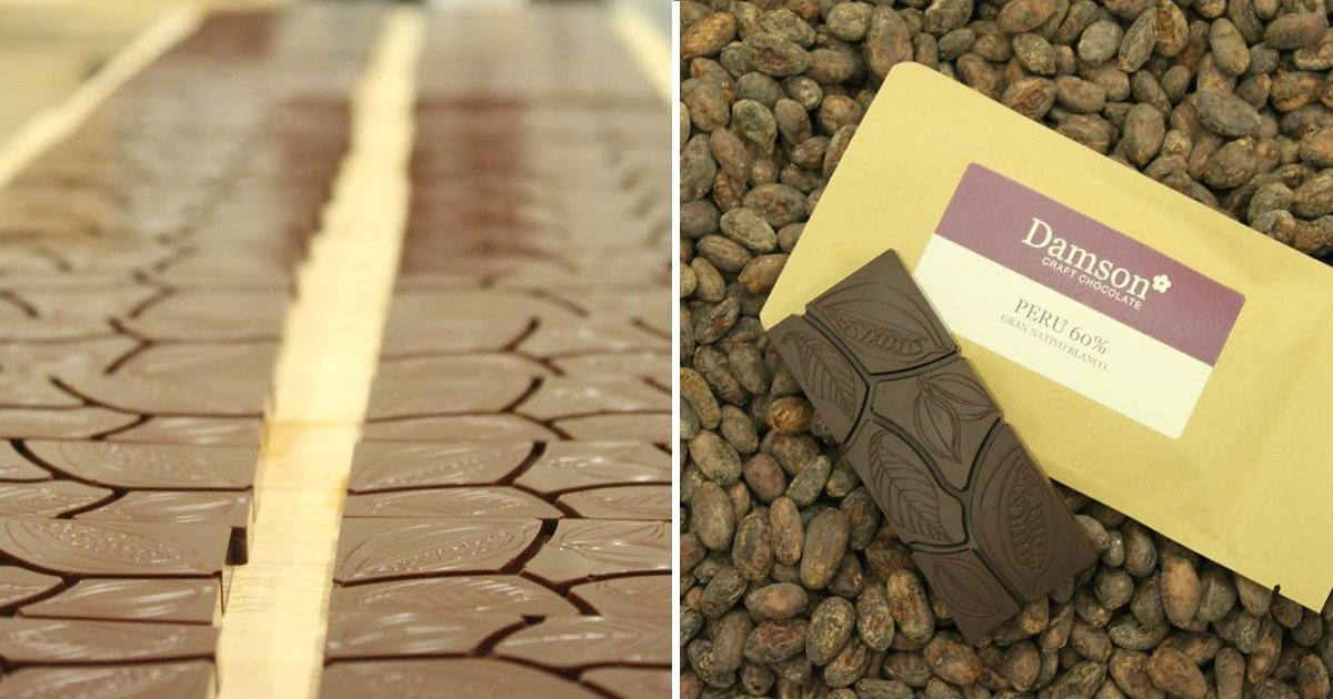 chocolate 1.jpg?resize=1200,630 - Vous êtes-vous déjà demandé comment le chocolat est fabriqué? Ce chocolatier explique tout ce que vous avez toujours voulu savoir