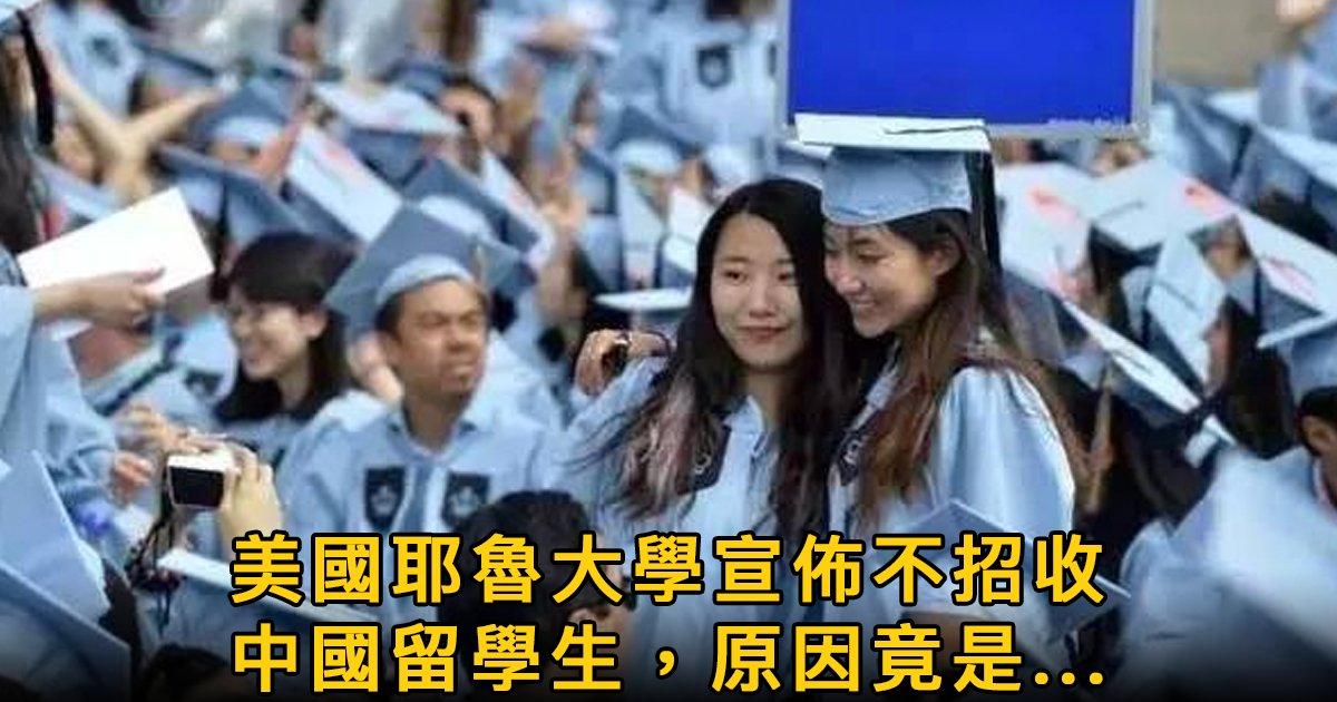 e69caae591bde5908d 1 11.png?resize=1200,630 - 耶魯大學突然宣布不招中國學生,竟是因為這個原因!