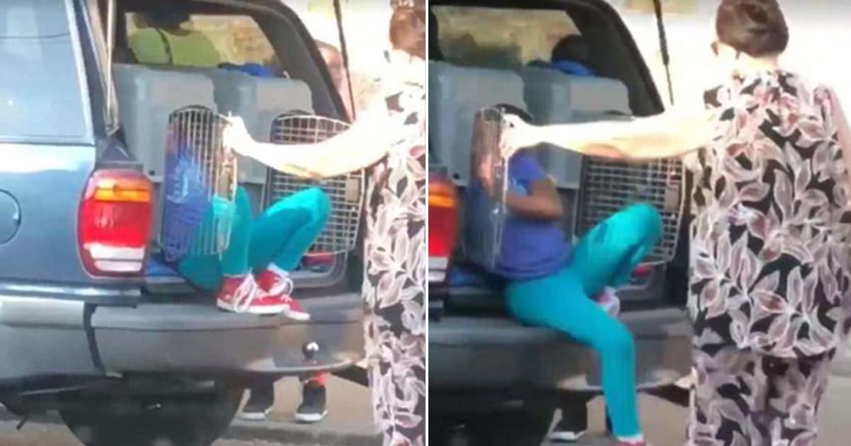 ebacb4eca09c 1 ebb3b5ec82ac 56.jpg?resize=1200,630 - Grandmother Approached By Police After Placing Granddaughter In Dog Cage Because There Was No Space In Car