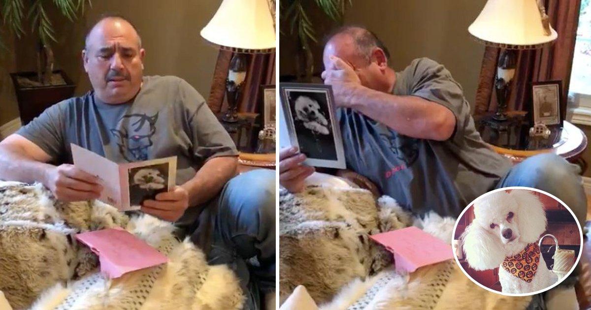 gift.jpg?resize=300,169 - Cet homme désemparé par la mort de ses chiens, s'effondre en voyant son cadeau d'anniversaire