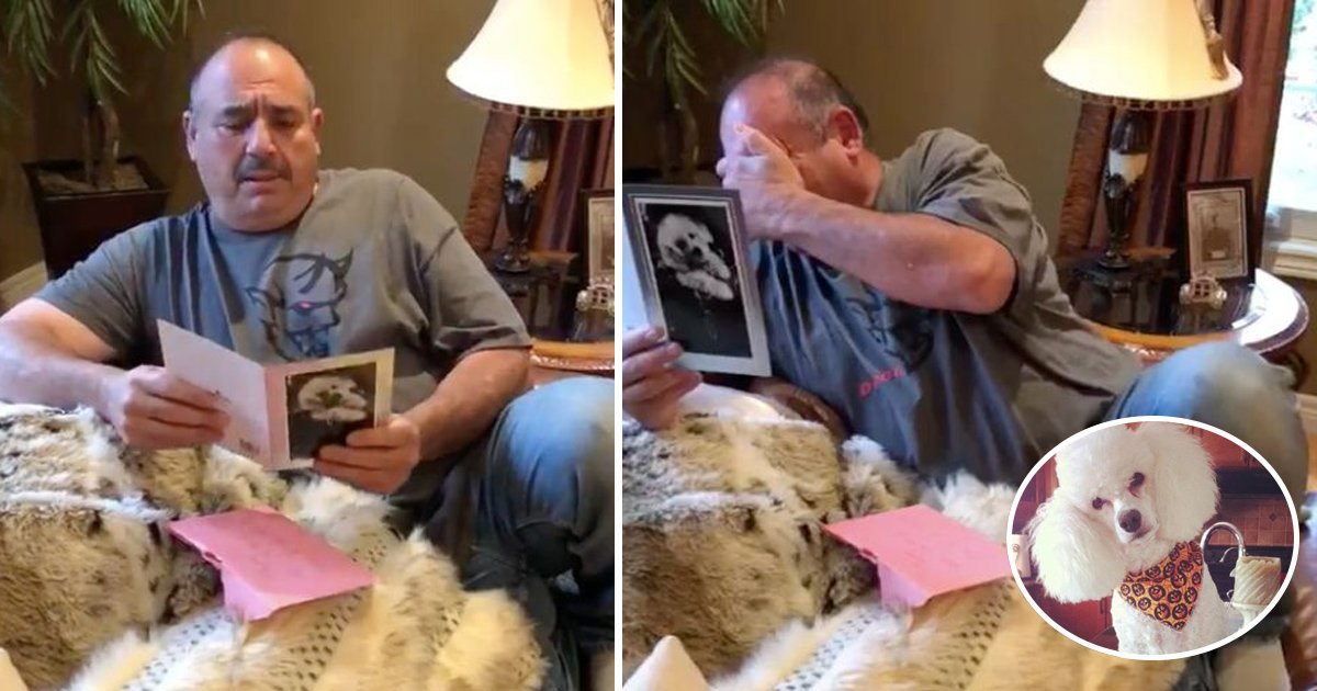 gift.jpg?resize=636,358 - This Man Was Distraught By The Death Of Two Of His Dogs, When He Got His Birthday Present, He Couldn't Stop Himself From Crying