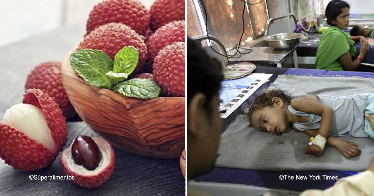 india.png?resize=300,169 - La fruta de la muerte, esta era la causa por la que cientos de niños morían en la India