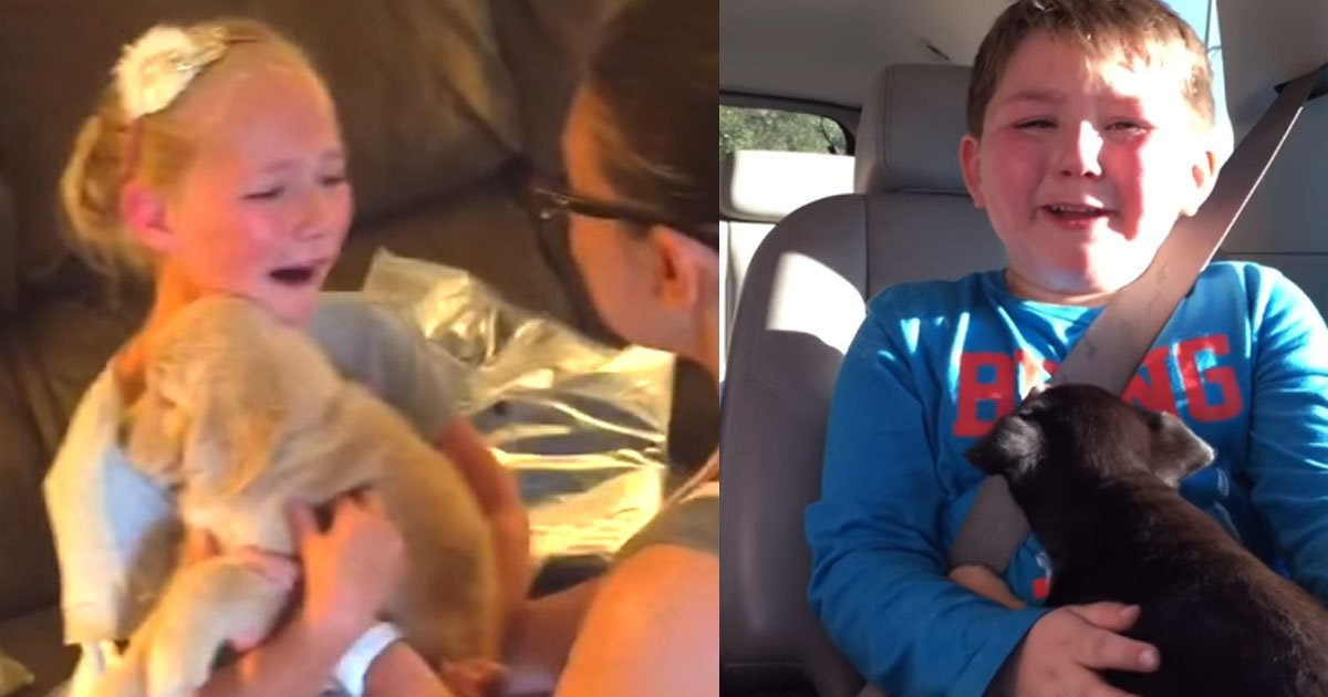 k.jpg?resize=636,358 - Kids' Adorable Reactions To Meet Puppies For The Very First Time—So Sweet Moments!