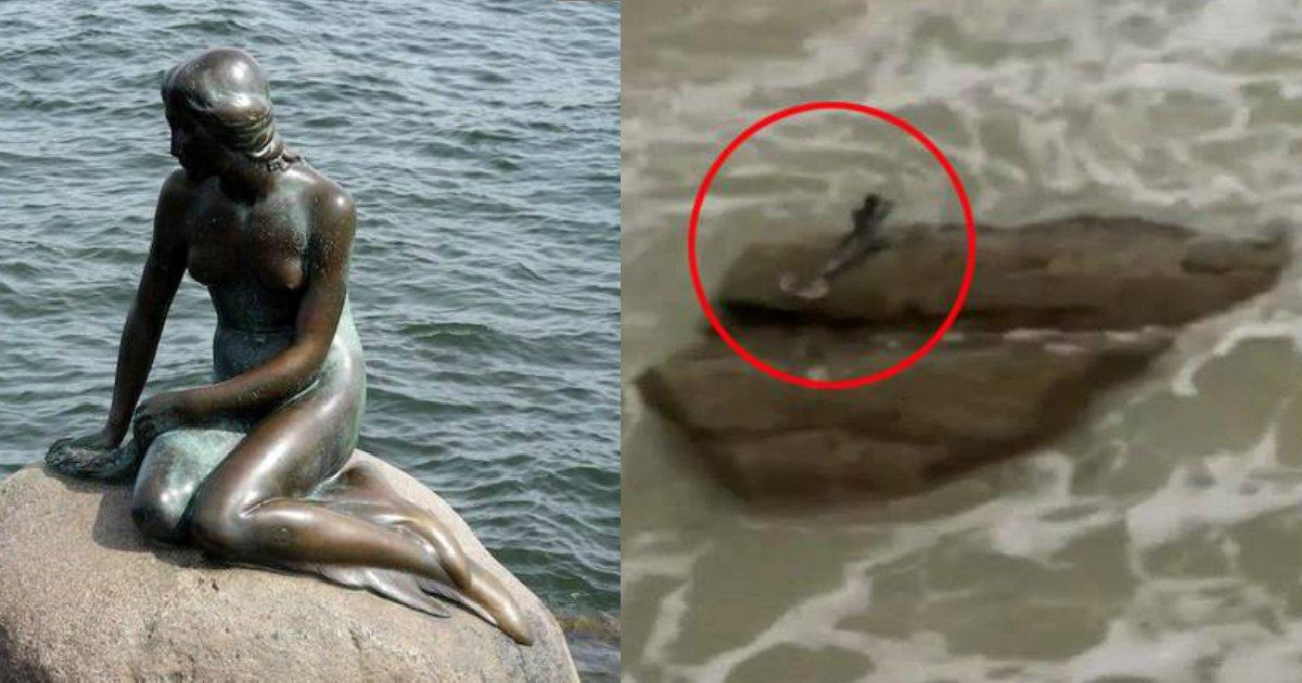 """memaid sighting.jpg?resize=648,365 - Registros de uma """"Sereia"""" na praia levaram à promessa de U$ 1 milhão pela sua captura"""