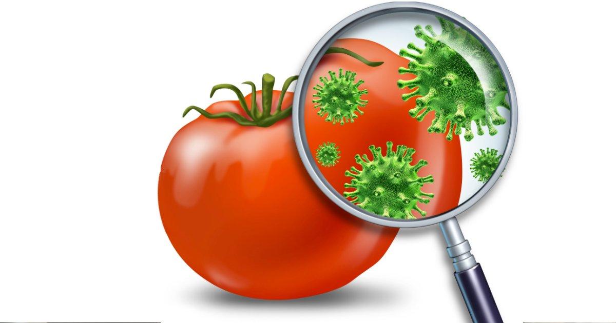 pesticidas.png?resize=1200,630 - Brasil é o país que mais consome agrotóxico