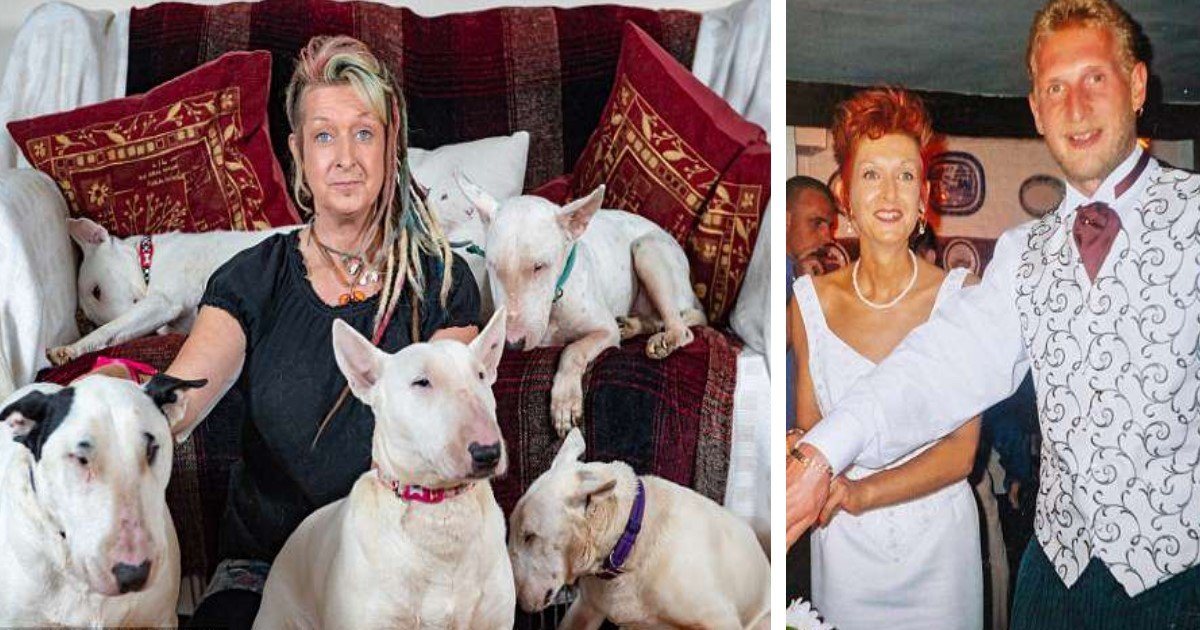 pic copy 2 4.jpg?resize=1200,630 - It's Me Or Your 30 Dogs?—Husband Leaves Wife Of 25 Years After She Chooses Her Rescue Dogs Over Him