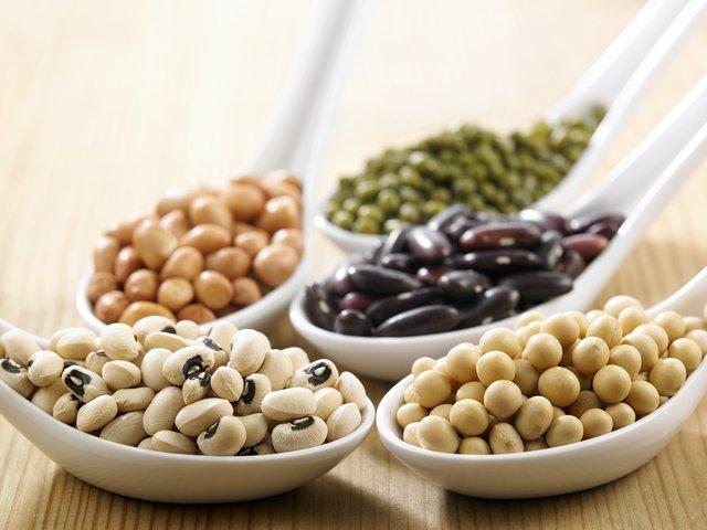「豆類」の画像検索結果