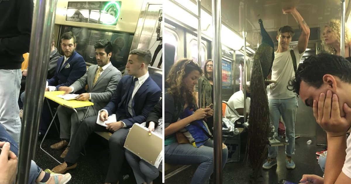 uad.jpg?resize=636,358 - 16 Things On The Subway That Made People Do A Double Take