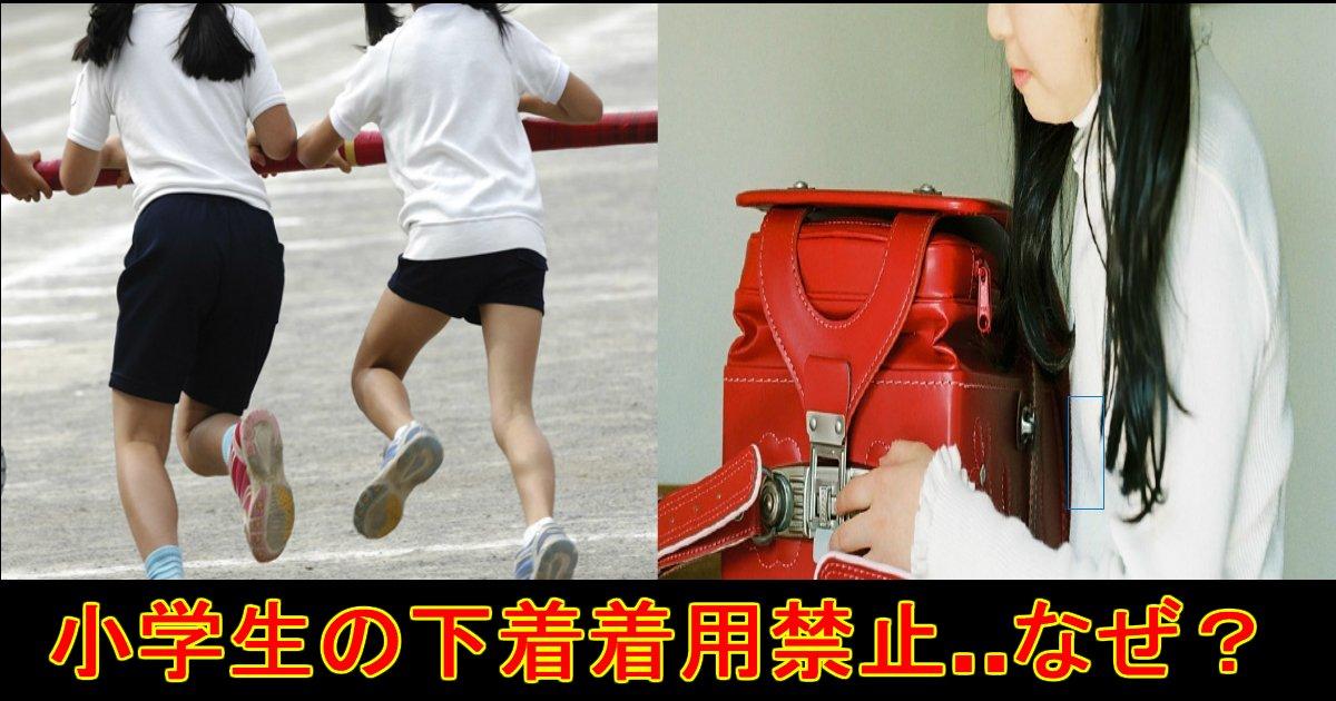 unnamed file 4.jpg?resize=300,169 - 『体操着の下の肌着・ブラ禁止』小学校の校則が物議「性的虐待では?」