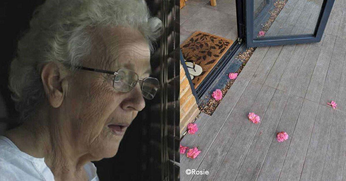 untitled 1 101.jpg?resize=300,169 - Una anciana llega a vivir a un nuevo hogar y comienzan a aparecer flores en la puerta, hasta que descubrió a su admirador secreto