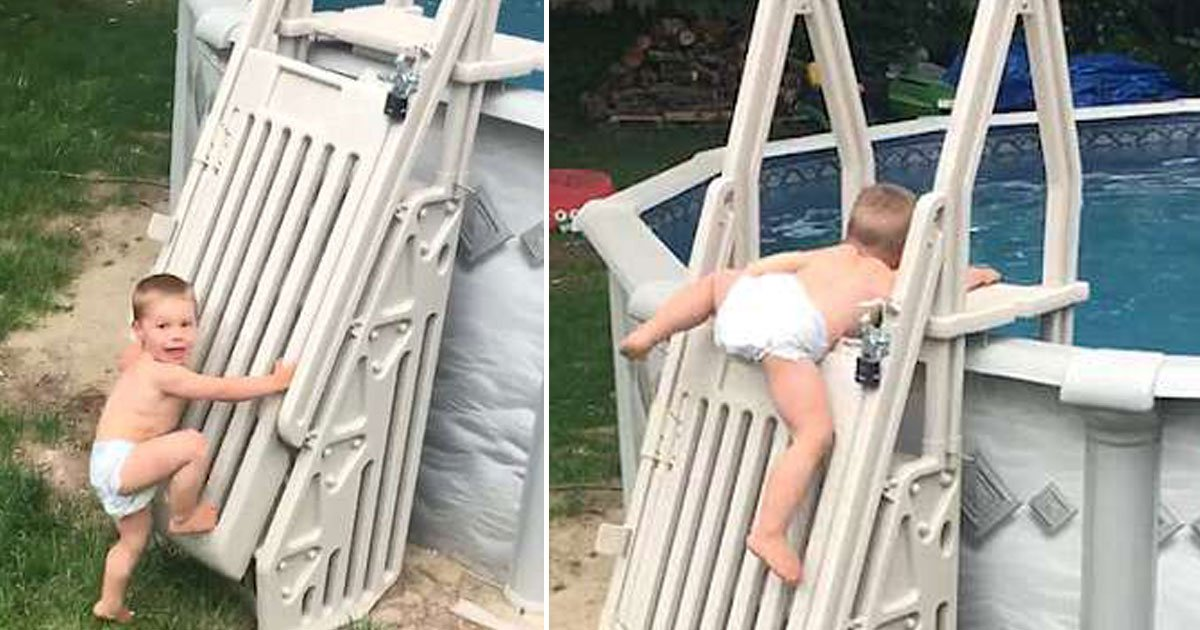 untitled 1 135.jpg?resize=1200,630 - Video Of A Two-Year-Old Pulling Himself Up An 'Unclimbable' Swimming Pool Ladder Went Viral, Leaving Everyone Worried