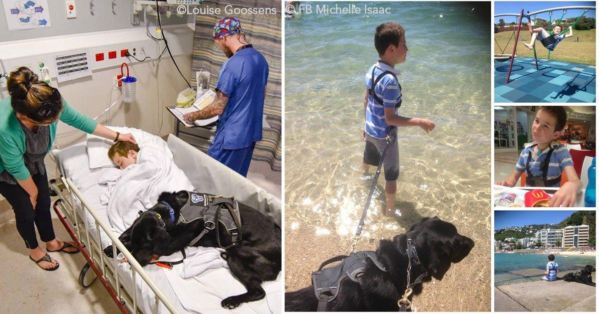 untitled 1 14.jpg?resize=300,169 - Es tan entrañable la relación de un niño autista y su perro guía que ha conmovido a todo el mundo
