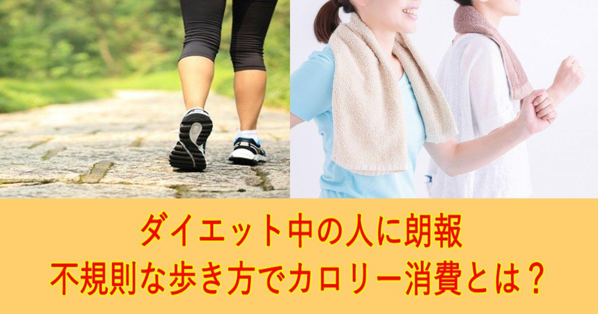 1 312.jpg?resize=1200,630 - 歩調を変える不規則な歩き方でカロリー消費!?