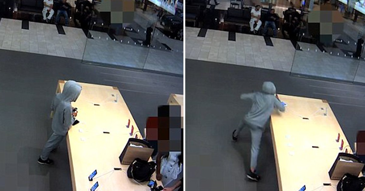 1 84.jpg?resize=636,358 - 5 Men Steal $20,000 Worth Of Products From Apple Store Without The Employee Noticing It