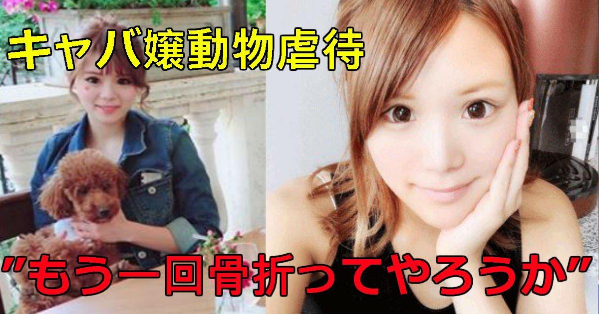2 143.jpg?resize=1200,630 - 東京エースキャバ嬢が動物虐待動画投稿した理由がヤバい!門りょうが保護を報告し、クビの噂も?