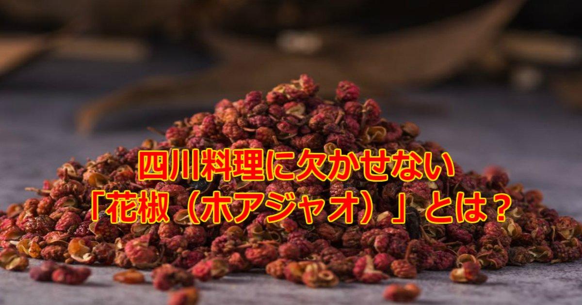 2 166.jpg?resize=1200,630 - 四川料理に欠かせない「花椒(ホアジャオ)」とは?山椒とはまた違うもの?