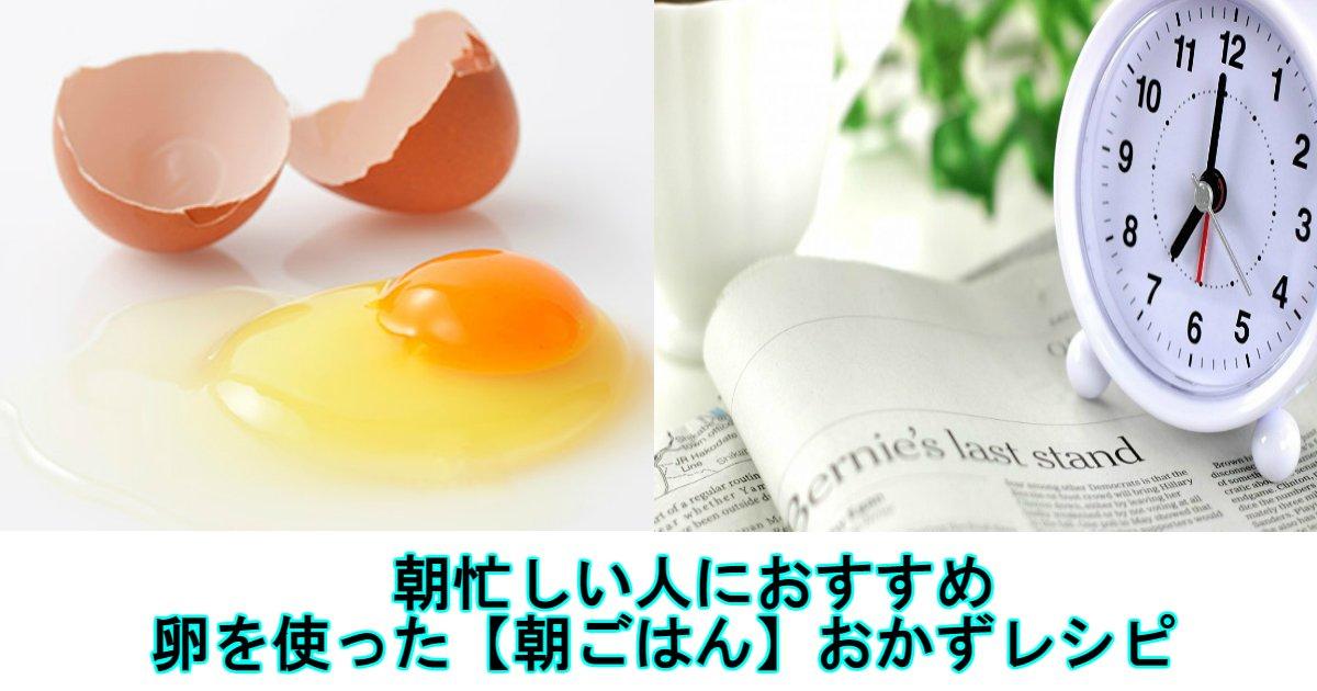 2 169.jpg?resize=1200,630 - 朝ごはんにぴったり!卵を使った【朝ごはん】おかずレシピ5選!