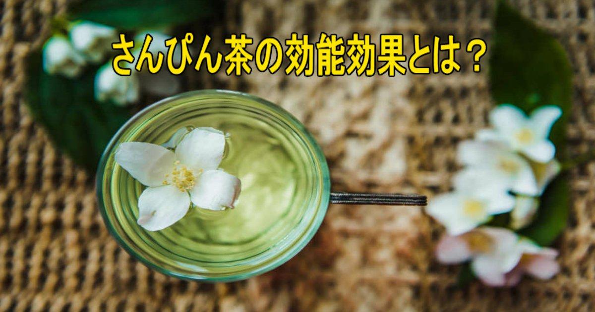 2 219.jpg?resize=412,232 - 沖縄の代表的なお茶といえば「さんぴん茶」、その効能とは?