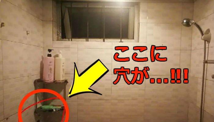 3 250.jpg?resize=1200,630 - ゲストハウスのトイレに穴開けてシャワーするお客様を「盗み見」するホスト