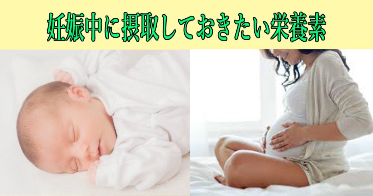 3 280.jpg?resize=1200,630 - 【妊娠・出産】妊娠中に摂取しておきたい栄養素とは?