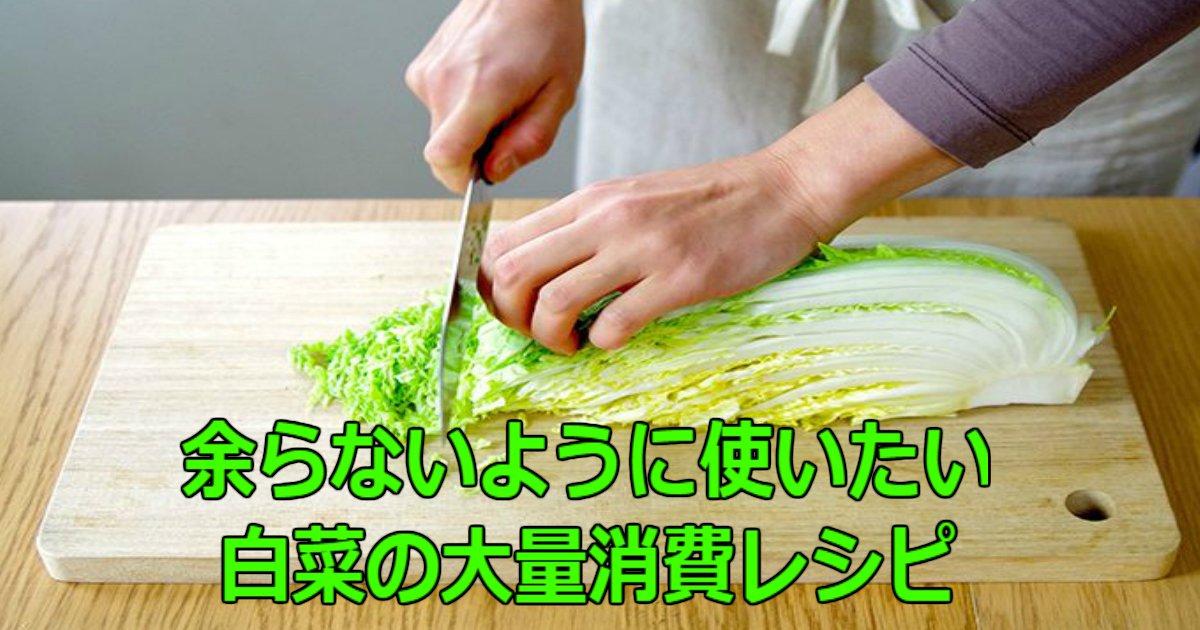 4 148.jpg?resize=300,169 - 余らないように使いたい!白菜の大量消費レシピ10選!