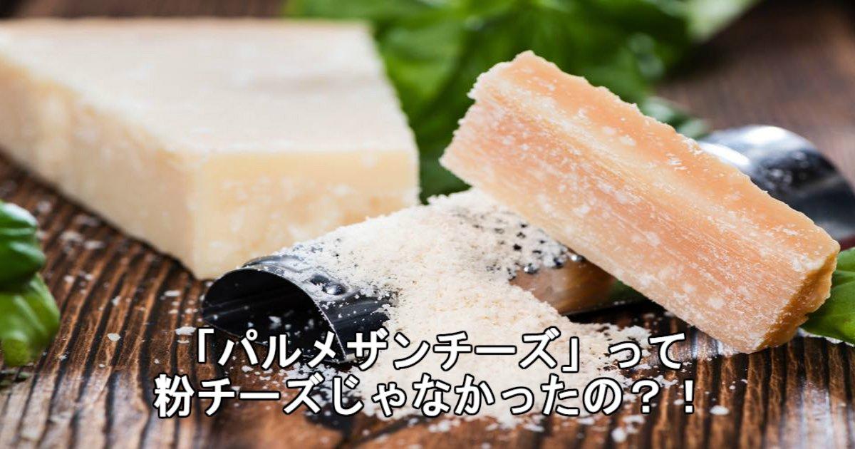 5 129.jpg?resize=1200,630 - 【解説】「パルメザンチーズ」と粉チーズは何が違うの?