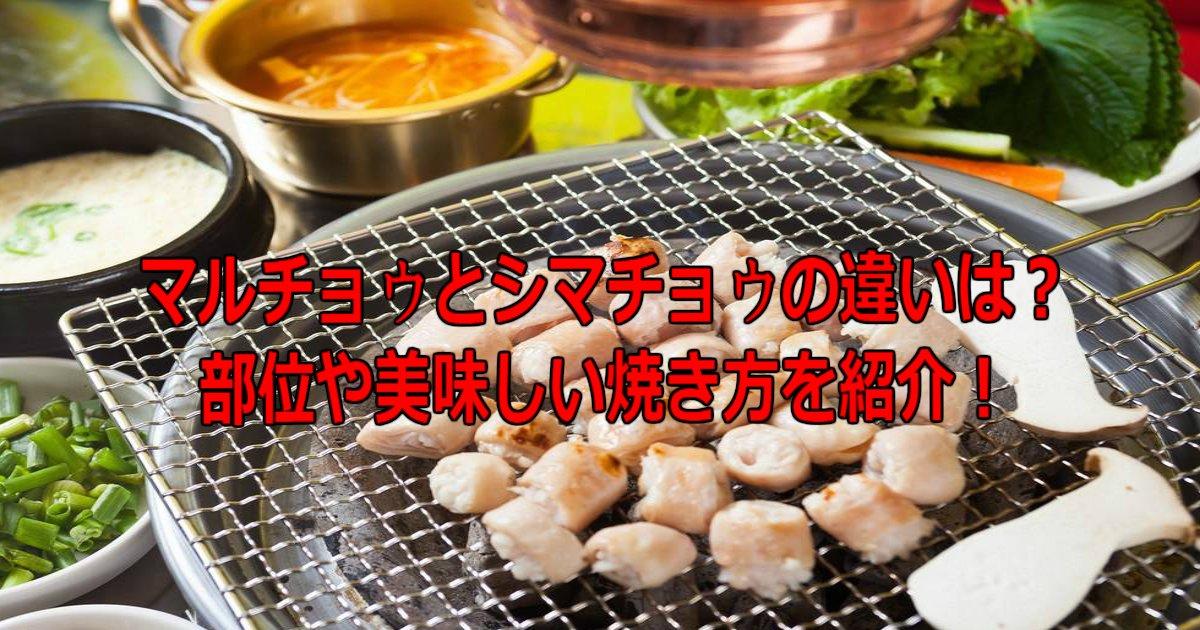 6 99.jpg?resize=412,232 - マルチョウとシマチョウの違いは?部位や美味しい焼き方を紹介!