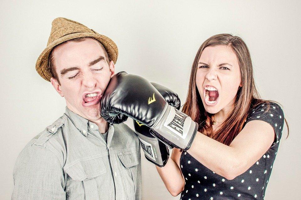 인수, 충돌, 논란, 분쟁, 경합, 경연 대회, 권투, 싸움, Dustup, 혼 전, 열띤된 논쟁