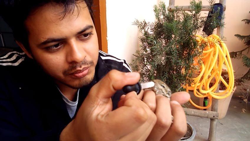 homem alimenta esquilo bebê