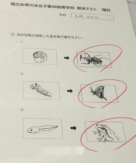 「高橋みなみ 絵」の画像検索結果