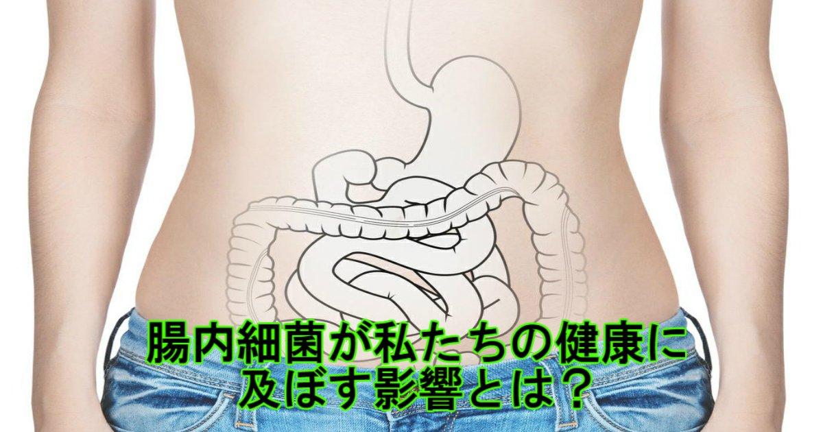 a 19.jpg?resize=1200,630 - 腸内細菌が私たちの健康に及ぼす影響とは?
