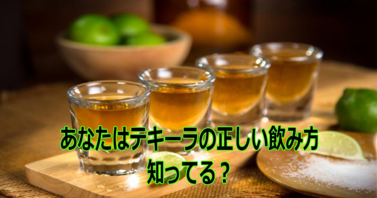 aa 5.jpg?resize=412,232 - あなたは知ってる?「テキーラ」の正しい飲み方をご紹介!!