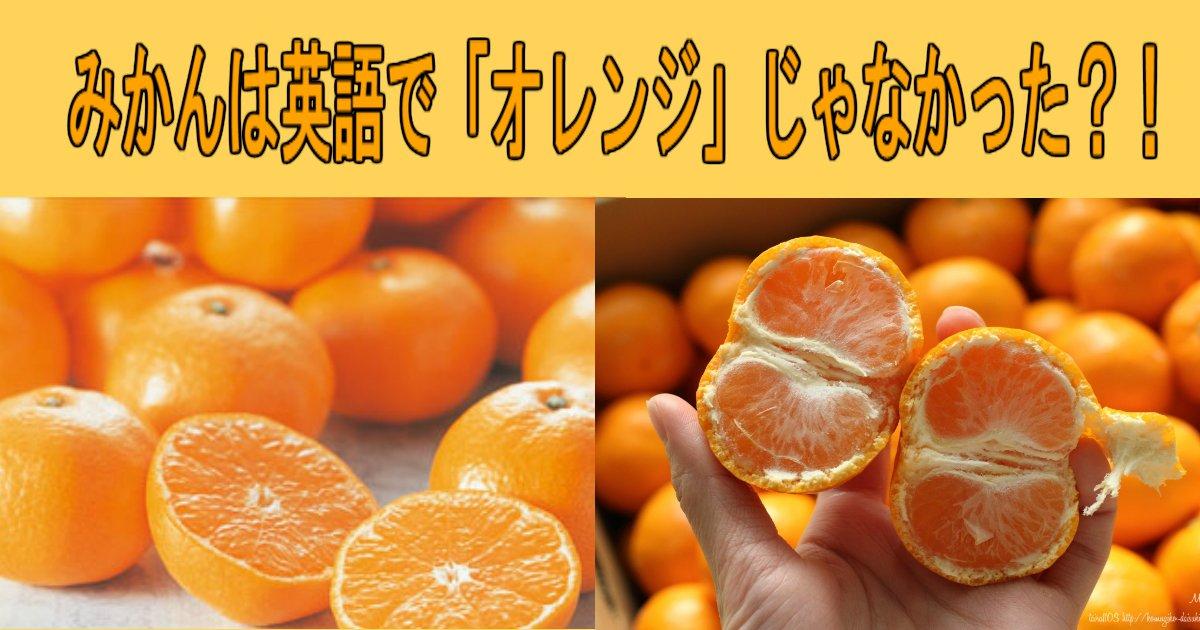 aa 8.jpg?resize=412,232 - みかんは英語で「オレンジ」じゃなかったってホント?!
