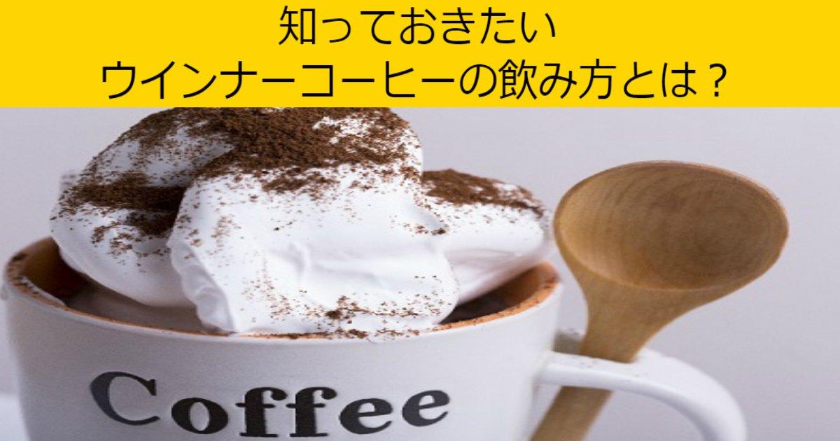 aaa 2.jpg?resize=300,169 - 【正しい】ウインナーコーヒーの飲み方とは?