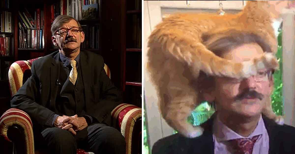 agdag.jpg?resize=412,232 - This Polish Academic Reaction To His Cat's Interruption In The Middle Of The Interview Will Give Your Belly A Tickle