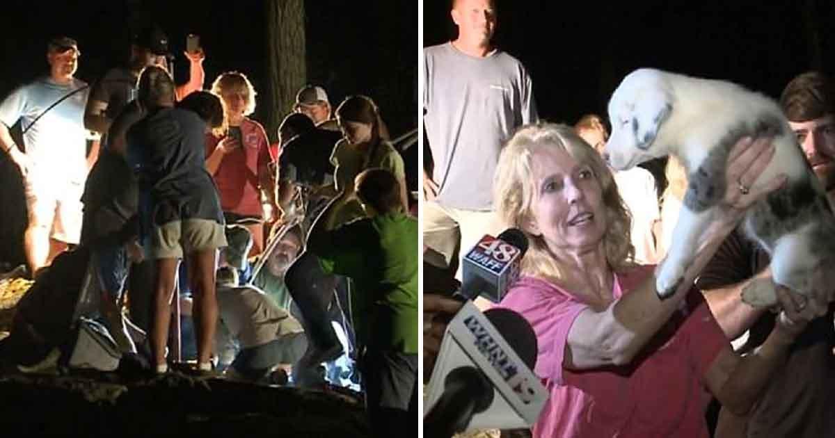 asdfasdfasdfasdf.jpg?resize=1200,630 - Un chiot de 7 semaines a été sorti d'un trou de 60 pieds après une opération de sauvetage de 31 heures