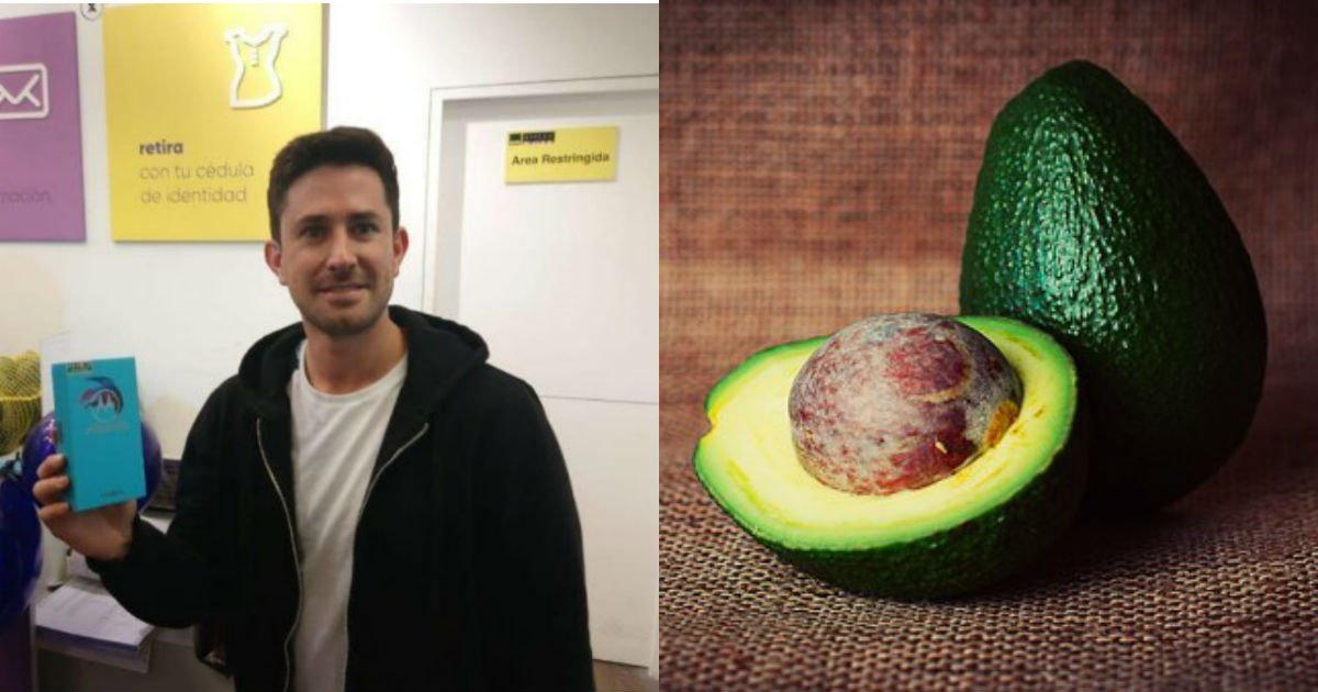 avocado 933060  340.jpg?resize=1200,630 - '아보카도' 58kg로 새 '휴대전화' 구매한 남성