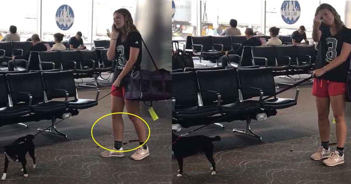 btttt.jpg?resize=648,365 - Les médias sociaux recherchent une femme qui a permis à son chien de faire ses besoins au milieu de l'aéroport
