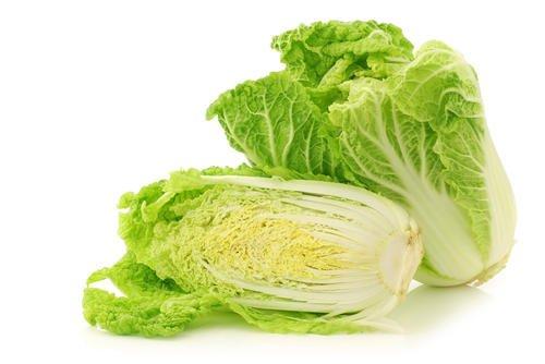 白菜에 대한 이미지 검색결과