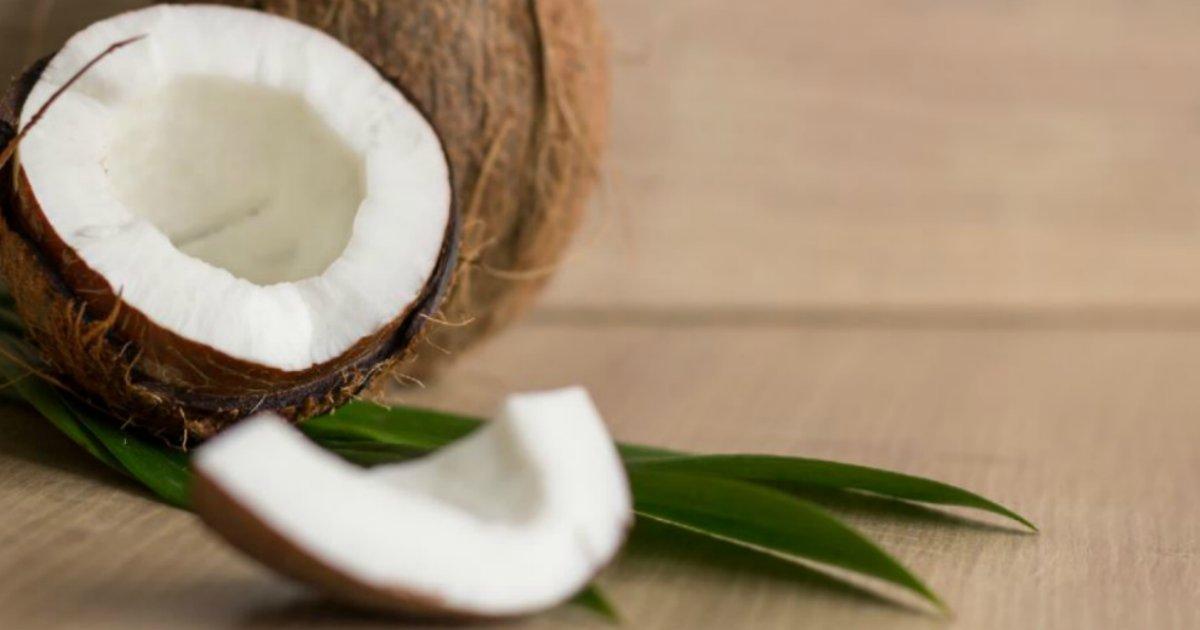 cocoseco.png?resize=412,232 - Coco seco é delicioso, dá saciedade e elimina gordura