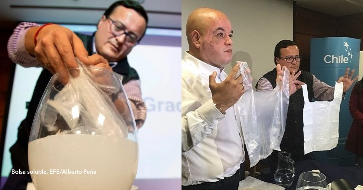 cov 1 23.png?resize=1200,630 - Empresa chilena cria sacos plásticos que se dissolvem na água em apenas 5 minutos
