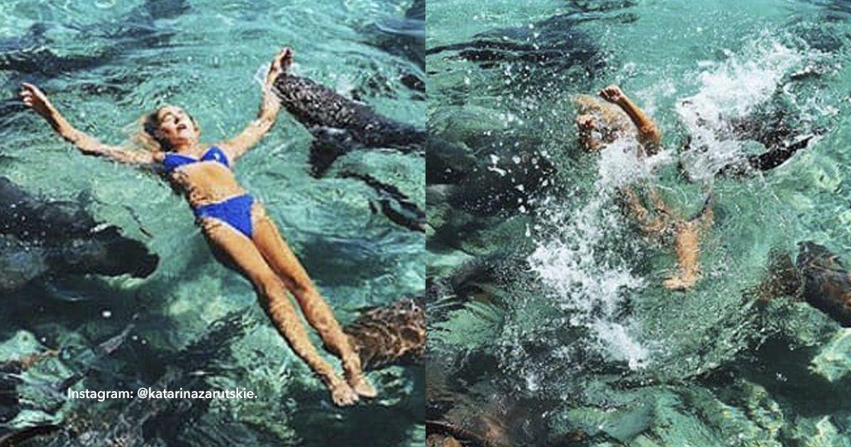 cov 1 7.png?resize=648,365 - Casi la come un tiburón por buscar la foto perfecta para su Instagram
