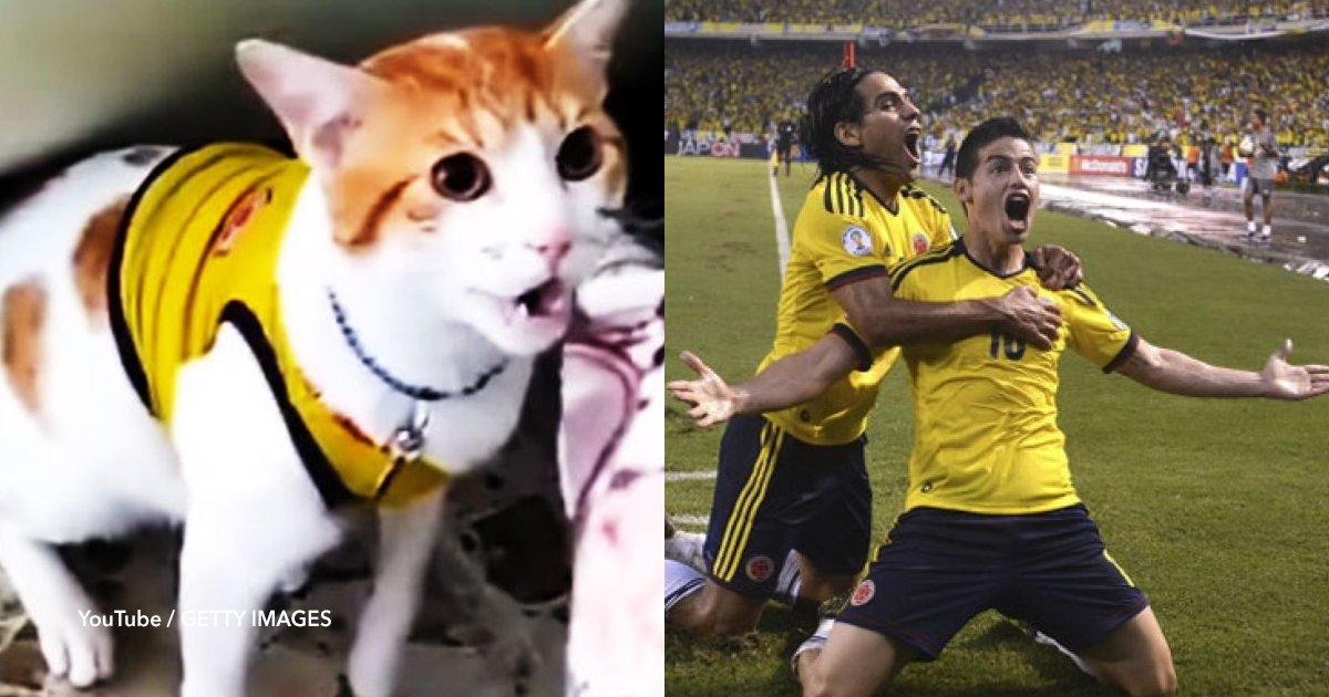 "cov 22.png?resize=300,169 - Conoce al gato que maulla ""gol"" cada vez que marca Colombia"