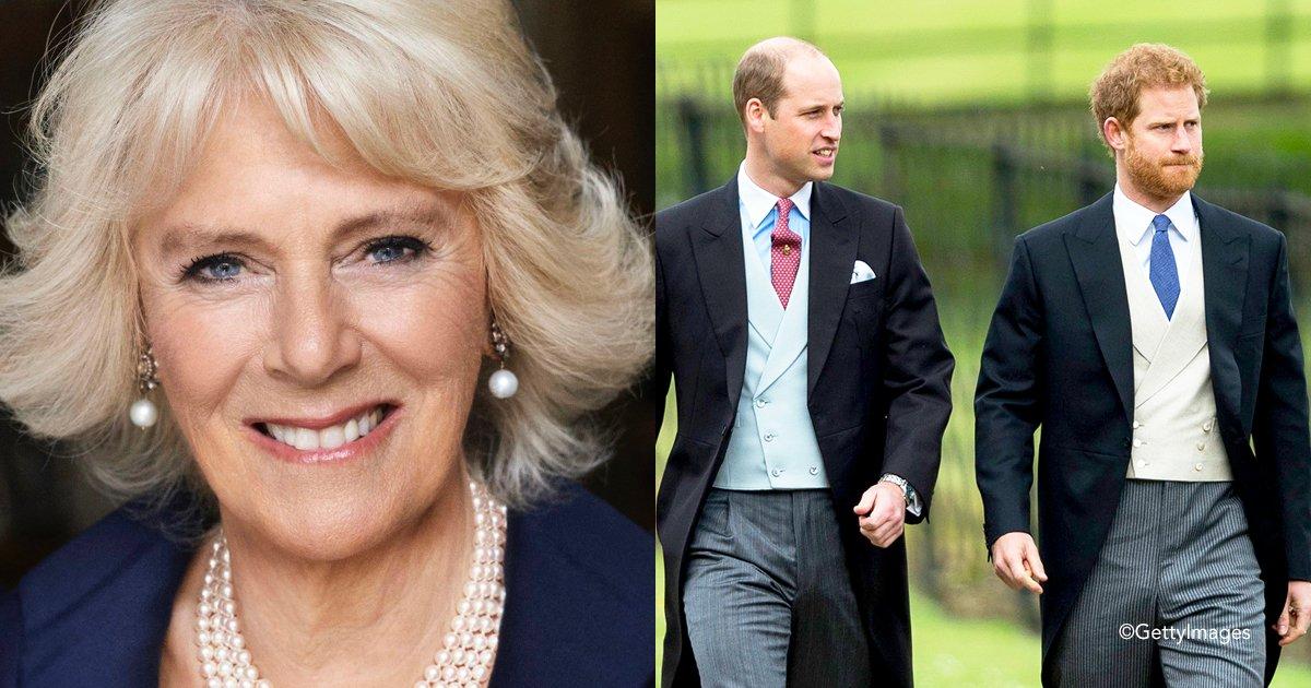 covernn.jpg?resize=300,169 - Los Príncipes Harry y William están muy molestos con Camilla Parker, porque en su nuevo libro criticó a Lady Di