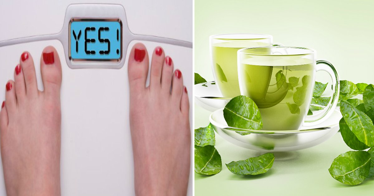 diet food.jpg?resize=412,232 - Top 10 Foods You Should Eat If You Are Trying To Lose Your Weight