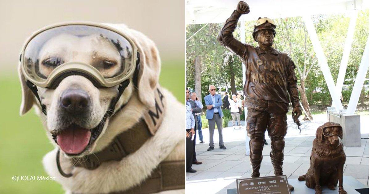 dog 8.jpg?resize=300,169 - Heroico perro obtiene su propia estatua por salvar 12 vidas de un terremoto