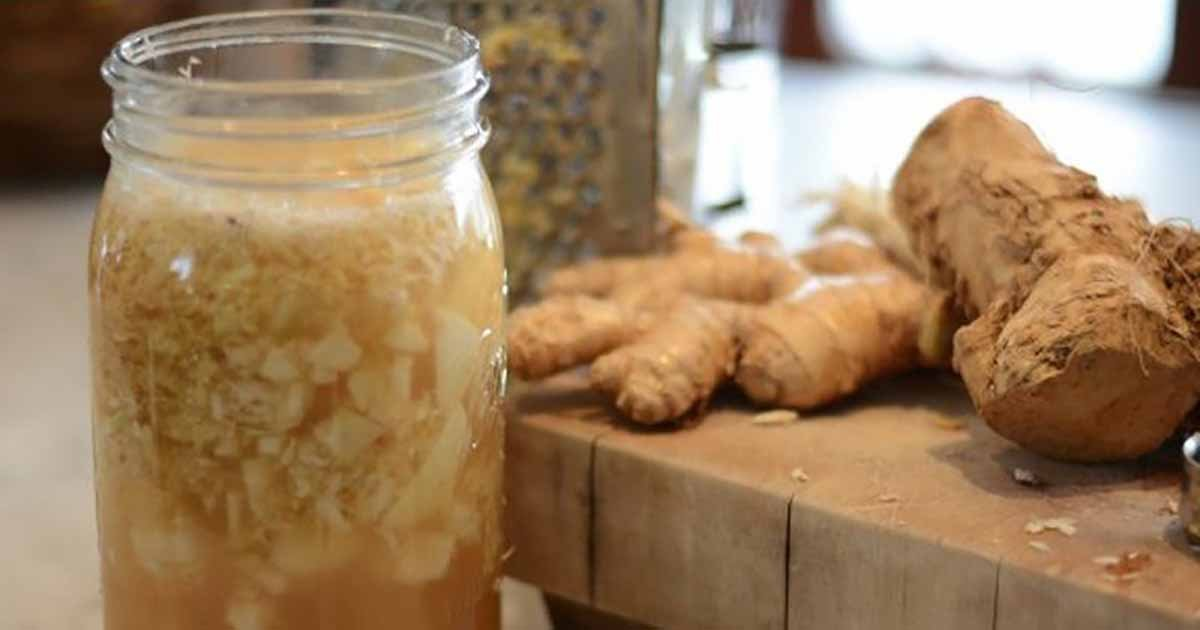 Image result for onions  ginger  honey or maple syrup turmeric powder
