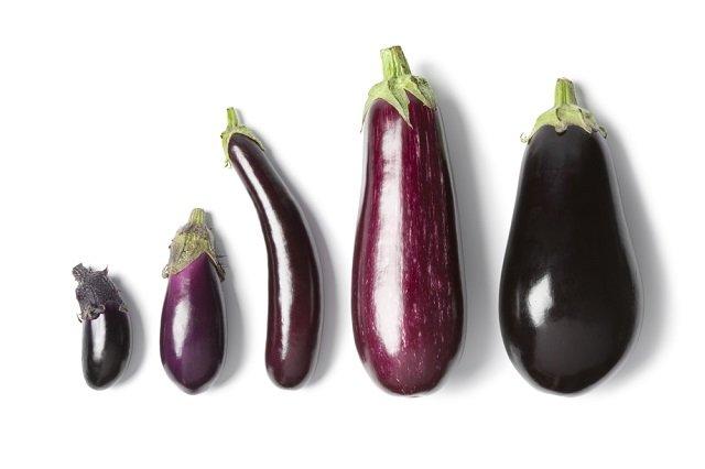 茄子에 대한 이미지 검색결과