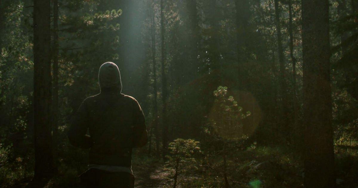 forest ttl.jpg?resize=412,232 - 【心理テスト】森での様子を想像してみよう...。その中にあなたの本能が!?